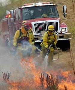 Fires Burn Area