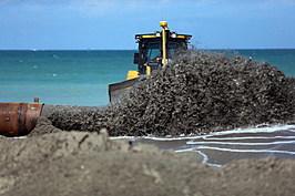 Florida Repairs Dunes, Prepares Coastline For 2013 Hurricane Season