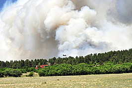 Black Forest Fire in Colorado Springs