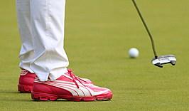 World Golf Championships-Bridgestone Invitational - Round Two