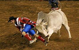 State of Origin International Rodeo
