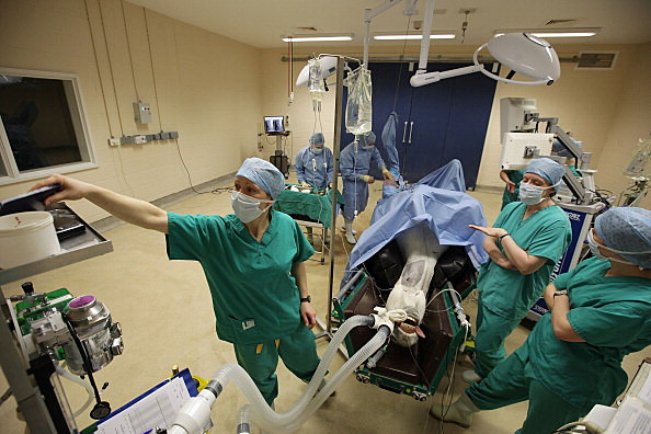 Surgeons Perform Treatment On Horses At The Newmarket Equine Hospital