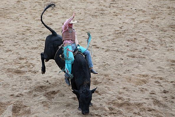 2013 Mareeba Rodeo