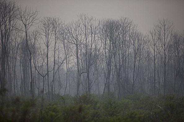 Indonesia Declares State Of Emergency As Riau Haze Worsens