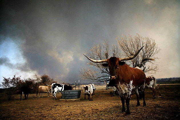 Wildfire In Possum Kingdom Area Of Texas Continues To Burn